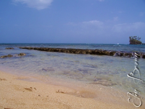 The beach near the College of Agriculture, Science and Education.