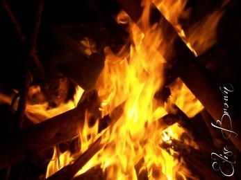 Campfire on the beach near the villa.