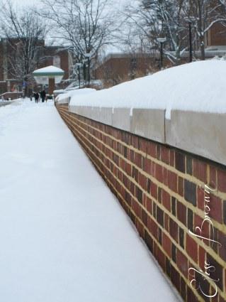 A Penn State sidewalk.