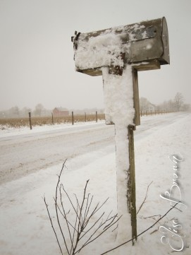 Mailbox, steady in the snow.