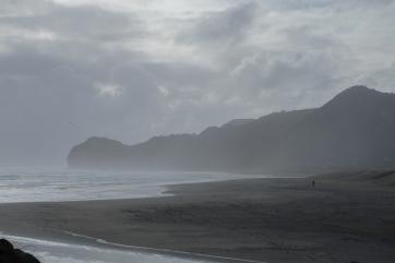 Rugged, windy Piha Beach along the Tasman Sea.