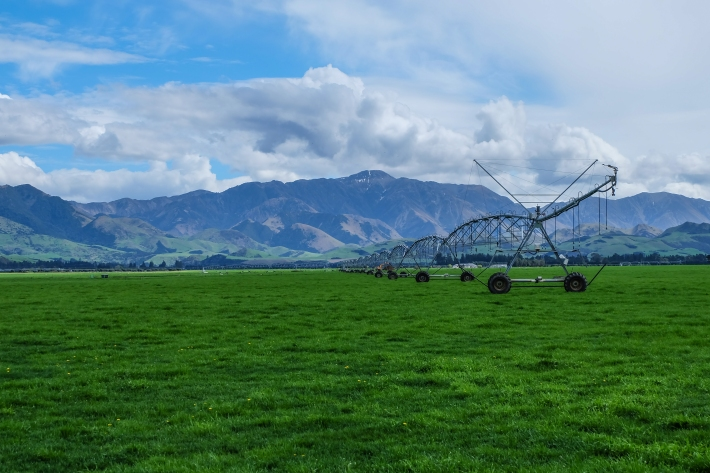 Irrigation on the dairy farm.