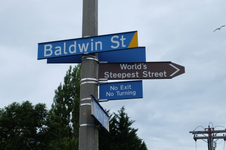 Baldwin Street is the world's steepest street with a 19 degree or 35% slope.