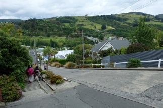 A view from near the top of Baldwin Street.
