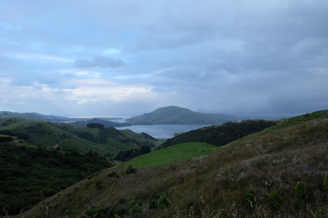 Looking out from a ridge of the Otago Peninsula.