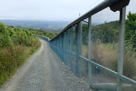 The predator fence at the Orokonui Ecosanctuary, which preserves native birds, some of which are endangered.