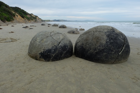 More of the Moeraki Boulders.