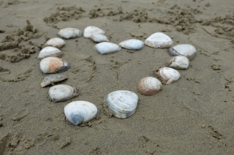 Shells arranged in a heart on Koekohe Beach, home of the Moeraki Boulders.