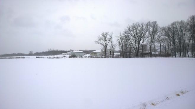 Snowy Adventure Farm